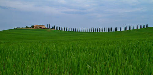 Tuscanscape by DostorJ