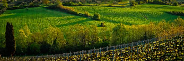 Tuscany-26