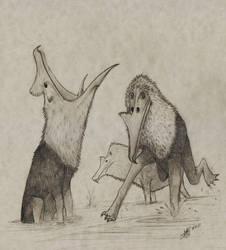 Saloprinceps leucocephalus 00
