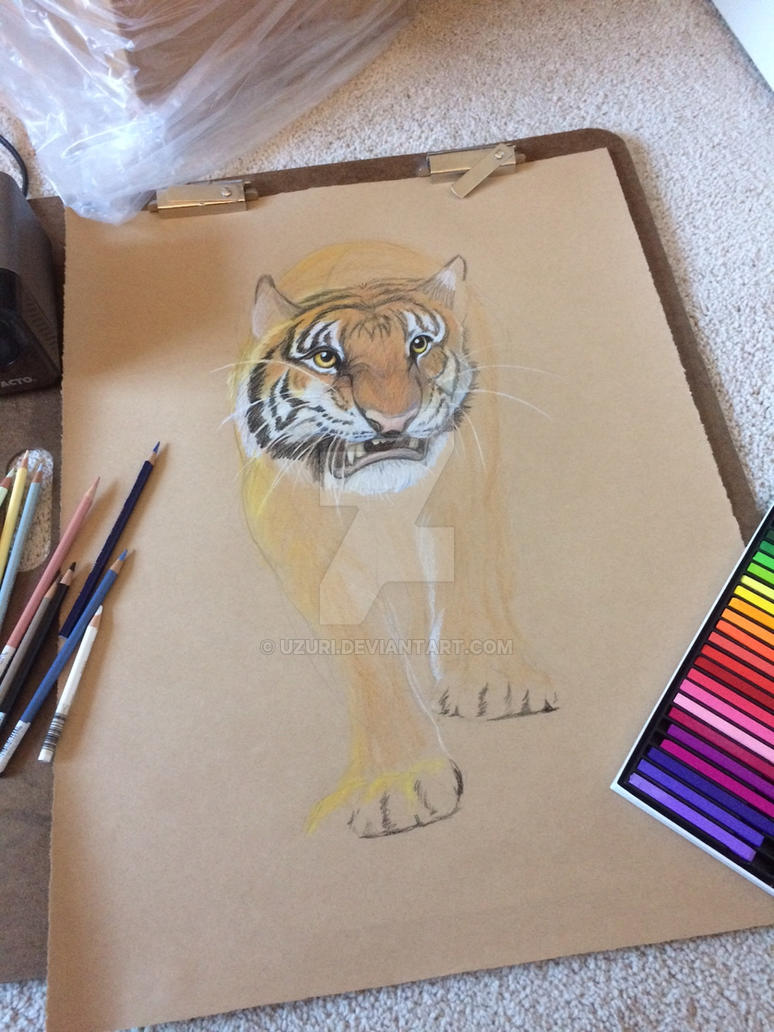 Tiger in progress by Uzuri