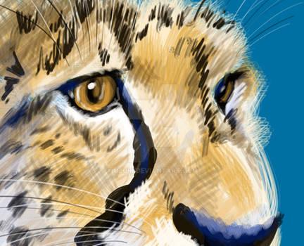 Cheetah detail speedpaint