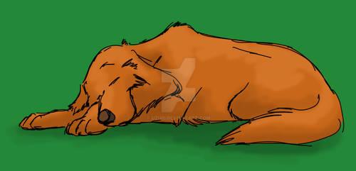 Uzuri having a doze