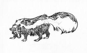 AC -- skunk by Uzuri
