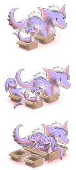 Box Jaggis