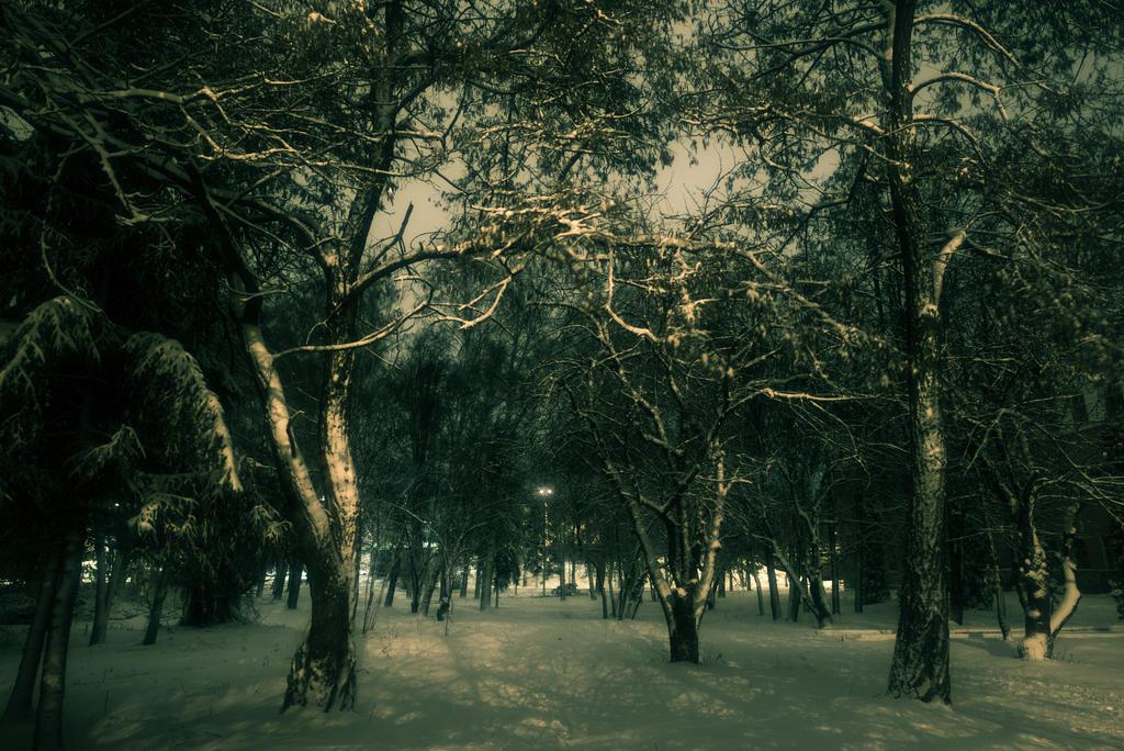 Night park by Anna-Belash