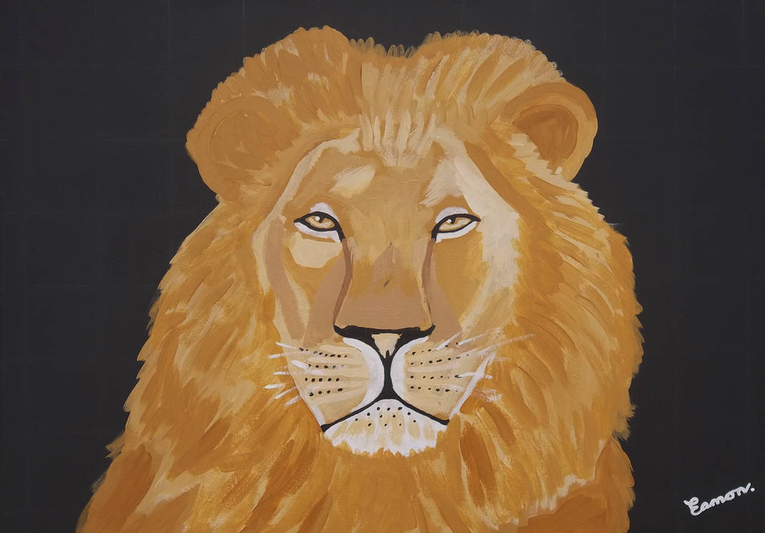 YOU CAN'T HIDE YOUR LION EYES by wwwEAMONREILLYdotCOM