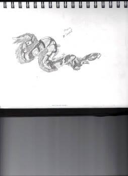 Snake In Motion