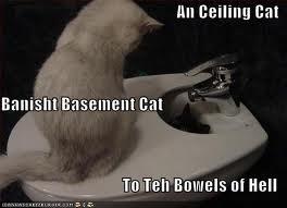 Ceiling Cat always wins by DemonSpawn12