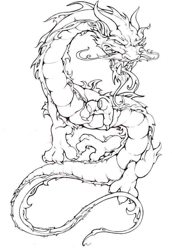 Line Drawing Dragon Tattoo : Dragon drawing by pallat on deviantart