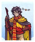 The Gryffindor Seeker