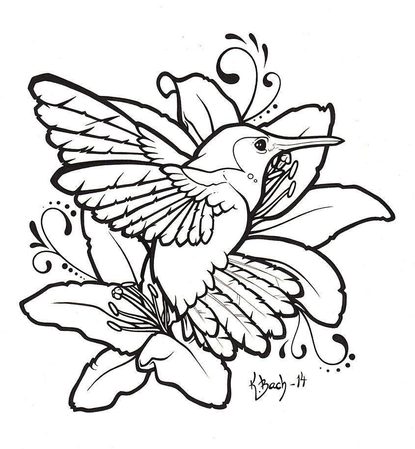 pin hummingbird line art pictures on pinterest