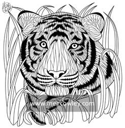 Sumatran Tiger (The Exotic Colouring Book)