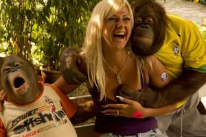 maymun is basinda by srpsrds