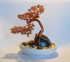 Semi Cascade Bonsai wire tree sculpture by minskis