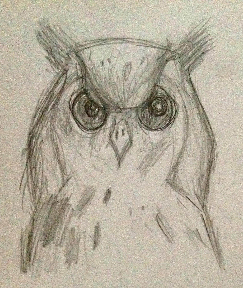 pencil drawing of owl by polka dot elephant on deviantart