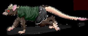 ratman crawling