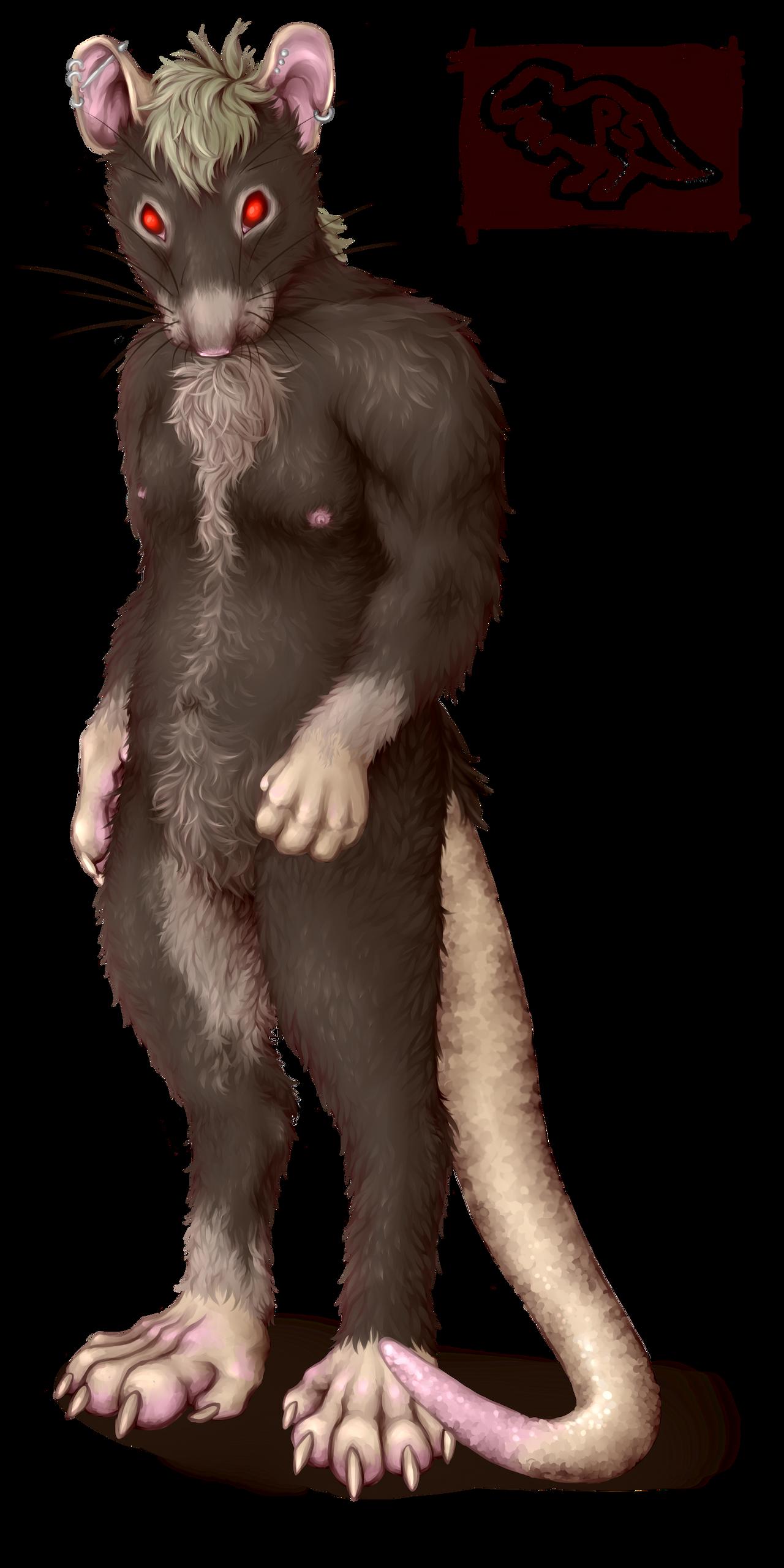 Ratman 'naked' study - sort of