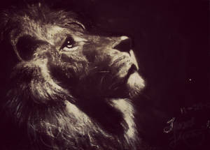 Strength of a Lion
