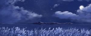 Moonlight Panorama