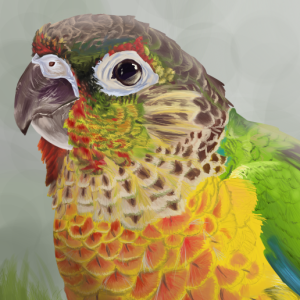 MagicBirdie's Profile Picture