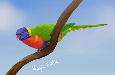 Rainbow Lorikeet by MagicBirdie