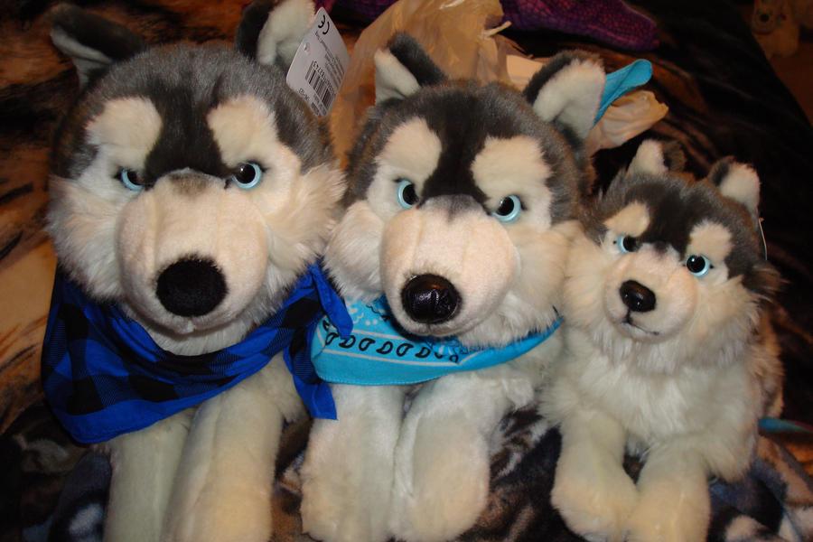 Uni-toys/Leosco and Hermann Teddy plush huskies. by Vesperwolfy87