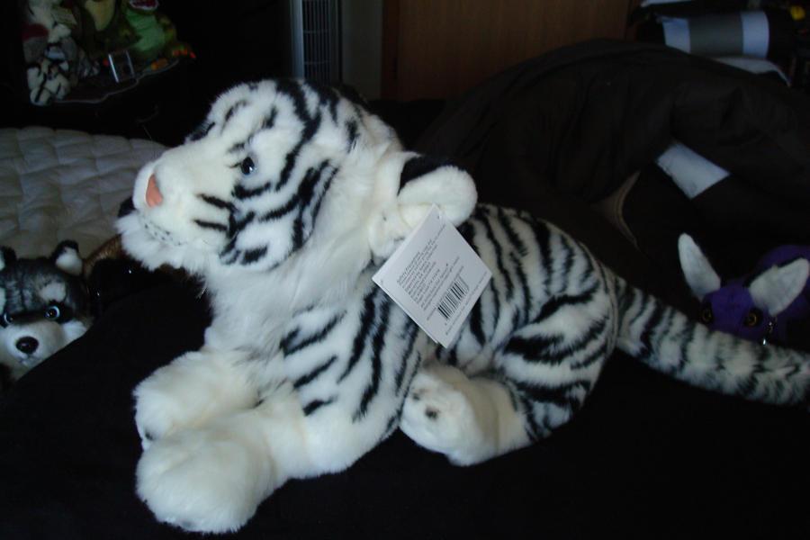 Leosco white Tigeress 18in side by Vesperwolfy87