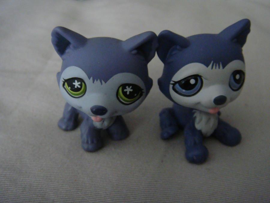 littlest pet shop husky - photo #18