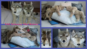 FAO Schwarz Wolves 18in!! by Vesperwolfy87