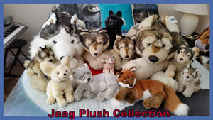 Jaag Plush Collection