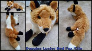 Douglas Luster Red Fox 13in