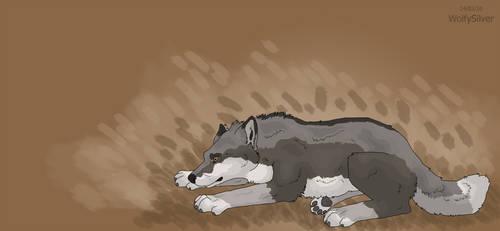 Watching Wolf by wolfysilver