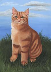 Bob the Street Cat by wolfysilver