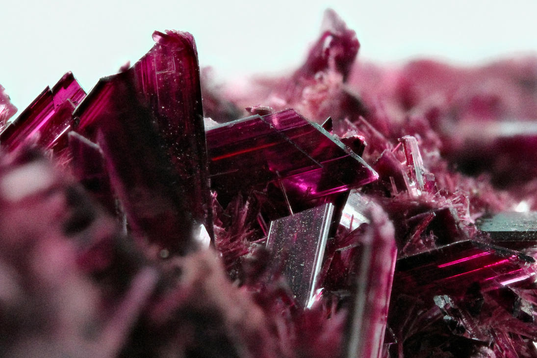 Erythrite - 'Cobalt Bloom' by bmah