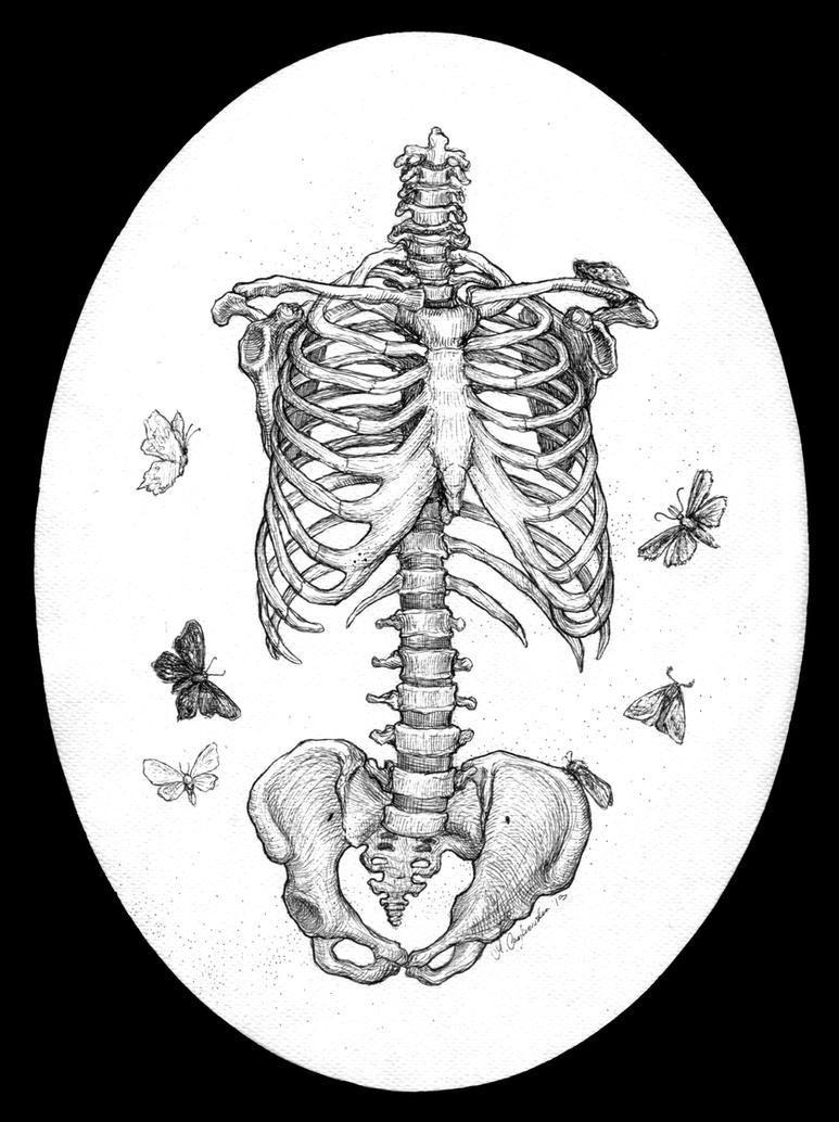 Fig II by Phronemophobiaa