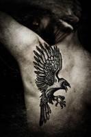 The Raven, pro-photo by Meatshop-Tattoo