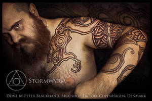 Stormwyrm recap by Meatshop-Tattoo