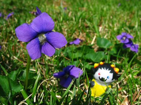 Grubs Like Spring