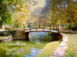Bridge by Olga17