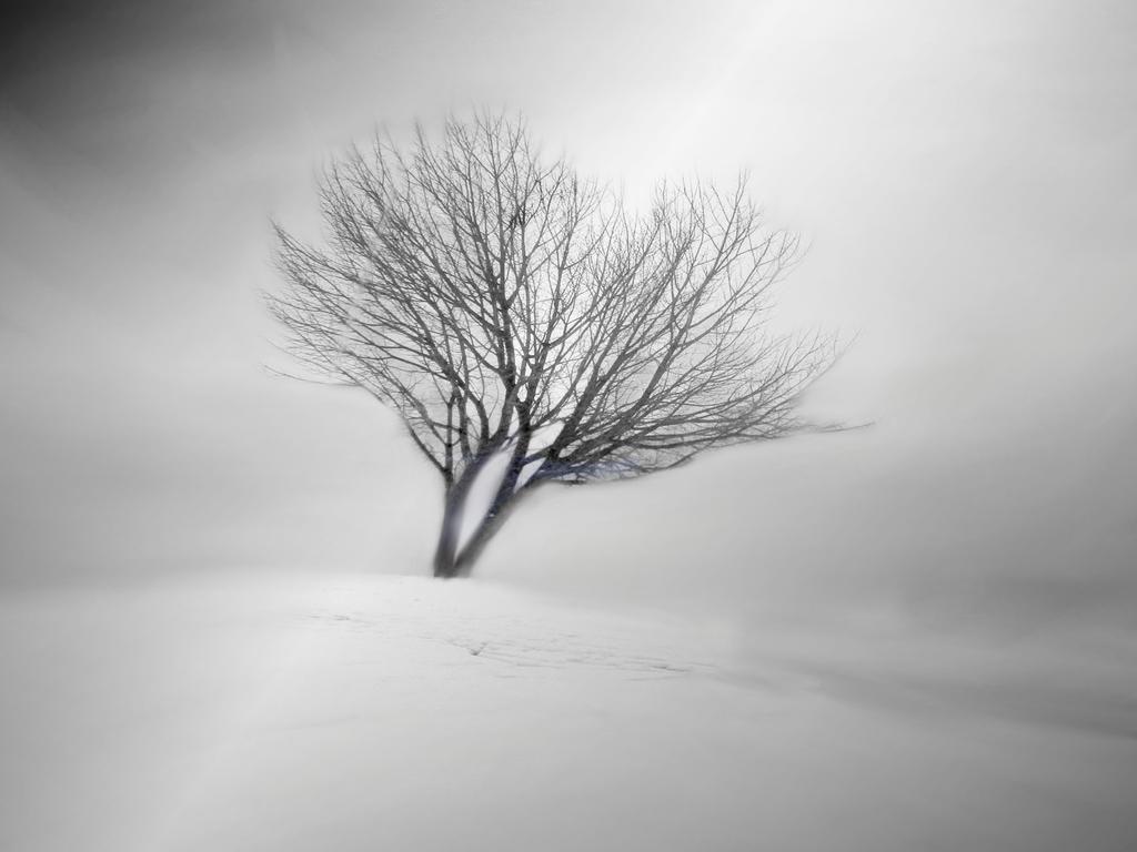 Alone by Olga17