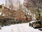 Snowing by Olga17
