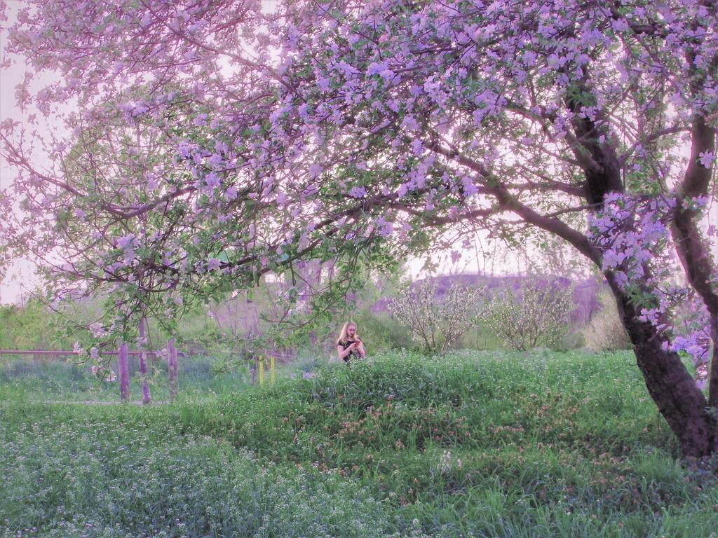 Spring story by Olga17