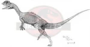New Dilophosaurus wetherlli