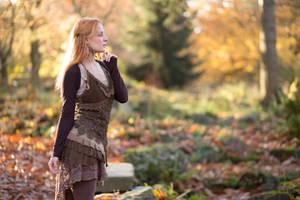 Autumn 03 by Fuchsfee-Stock