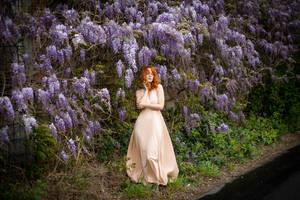 lilac 06