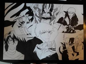 Ichigo Kurosaki collection complete: Outlines