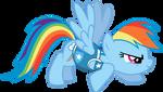 Winter Wrap Up - Rainbow Dash