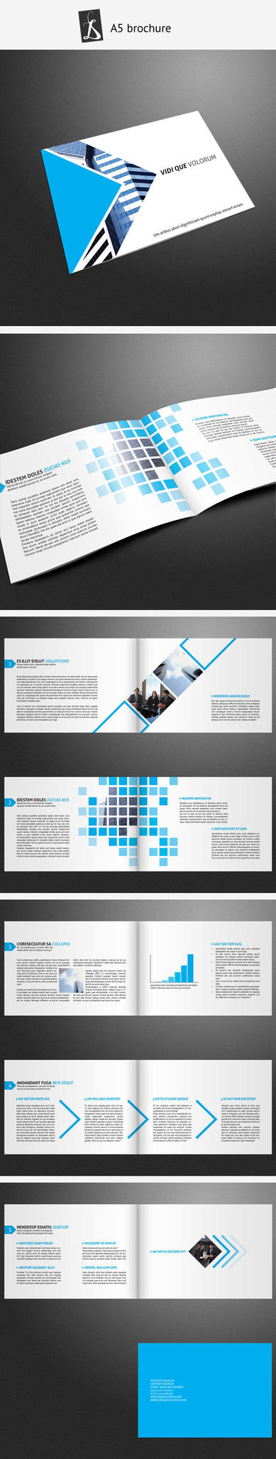 A5 Brochure 7 by demorfoza