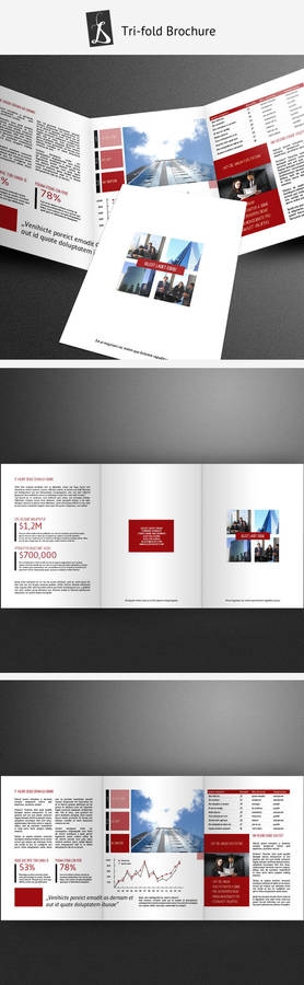 Tri-fold Brochure 7
