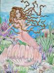 A mermaids world